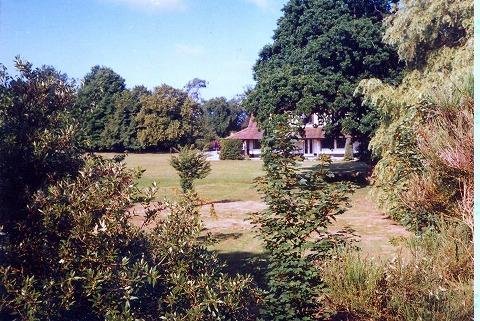 付近で見られる旧家屋、野生の屋敷
